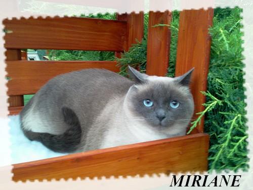 MIRIANE