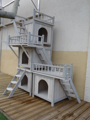 cabane-chat
